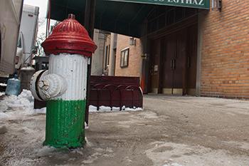 Magyar tűzcsap, New York