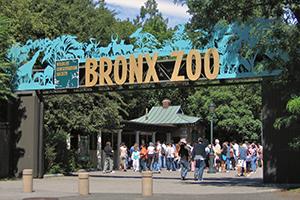 Bronxi állatkert