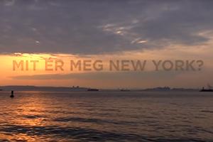 new york magyarok videó